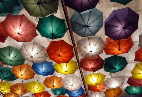 Free stock photo of random, umbrellas, vibrant colors