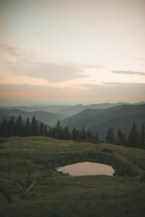 açık hava, ağaçlar, akşam karanlığı, çayır içeren Ücretsiz stok fotoğraf