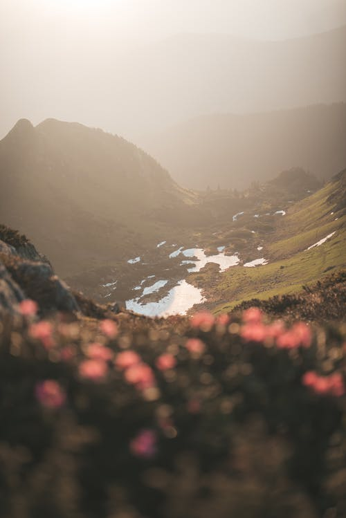 Selective Focus Photo of Mountain