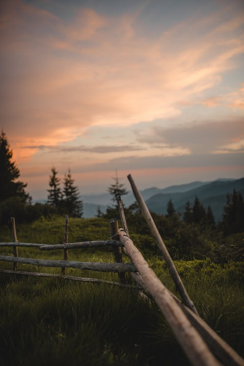 Aged wooden fence located near green trees in countryside in summer evening time