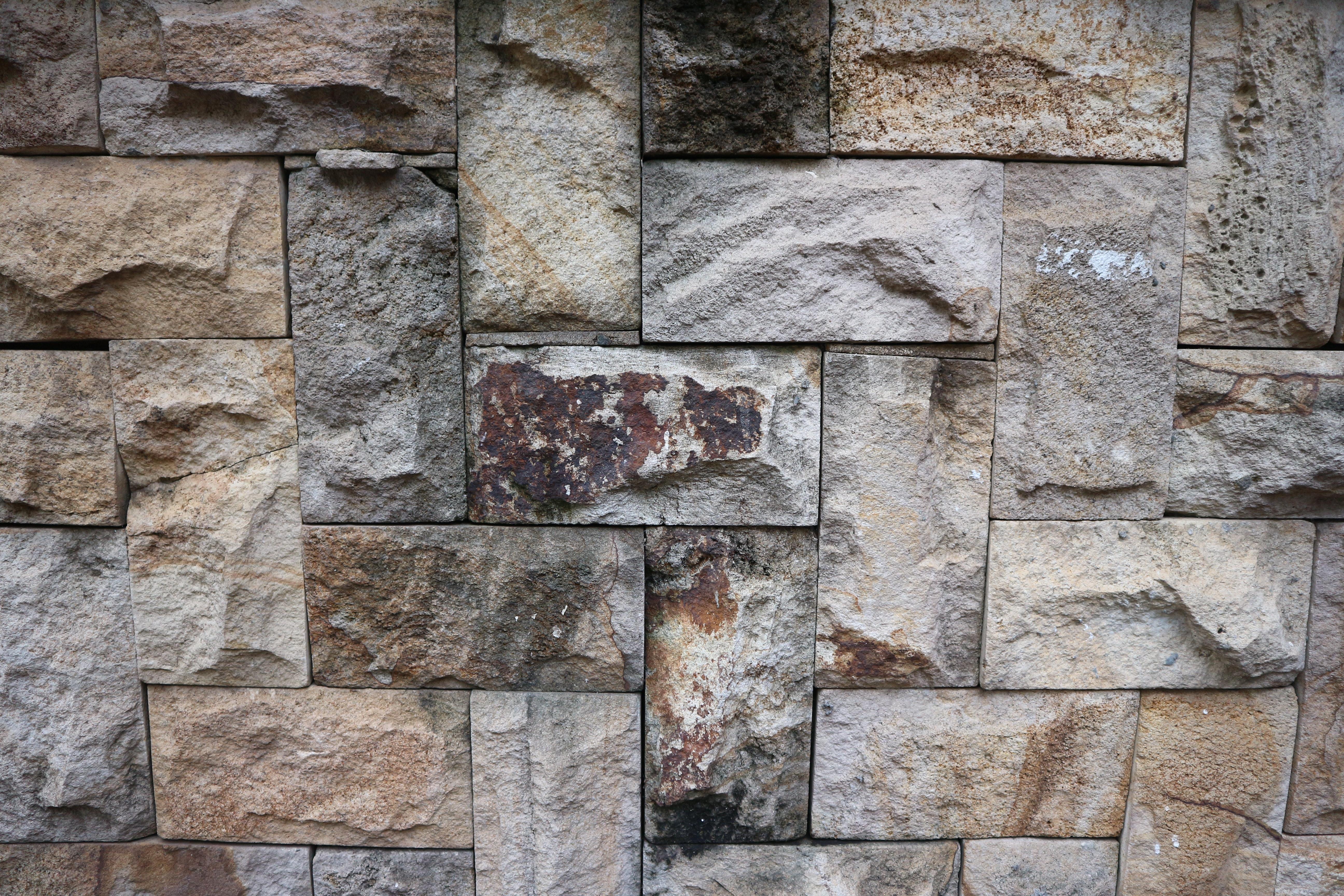 Kostenloses Foto zum Thema backstein backsteinmauer fliesen