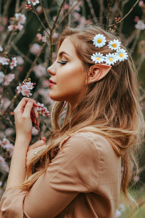 Side View Photo of Woman with Pointy Ear and Daisies on Her Hair Standing by Cherry Blossoms While Holding Cherry Blossom Branch