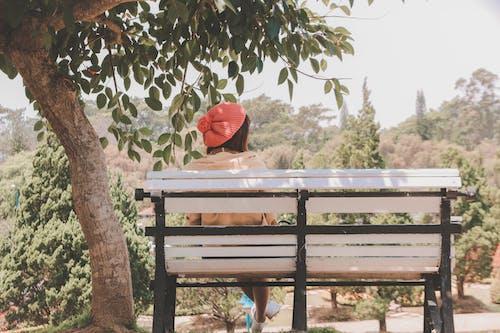 Fotos de stock gratuitas de asiento, banco, mujer, parque