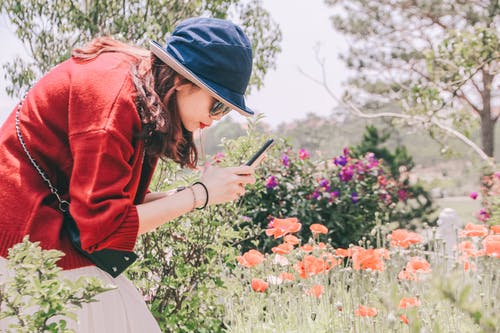 Photo of a Woman Taking Photo of Flowers Using a Smartphone