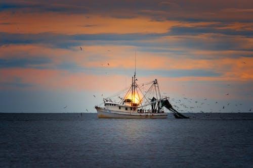 Foto profissional grátis de agbiopix, aquicultura, barco, costa