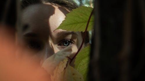 Gratis lagerfoto af blade, kvinde, øjne