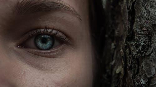 Gratis lagerfoto af #eyes