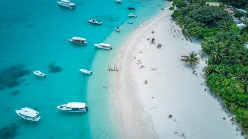 Безкоштовне стокове фото на тему «берег моря, вода, вродлива, денний час»