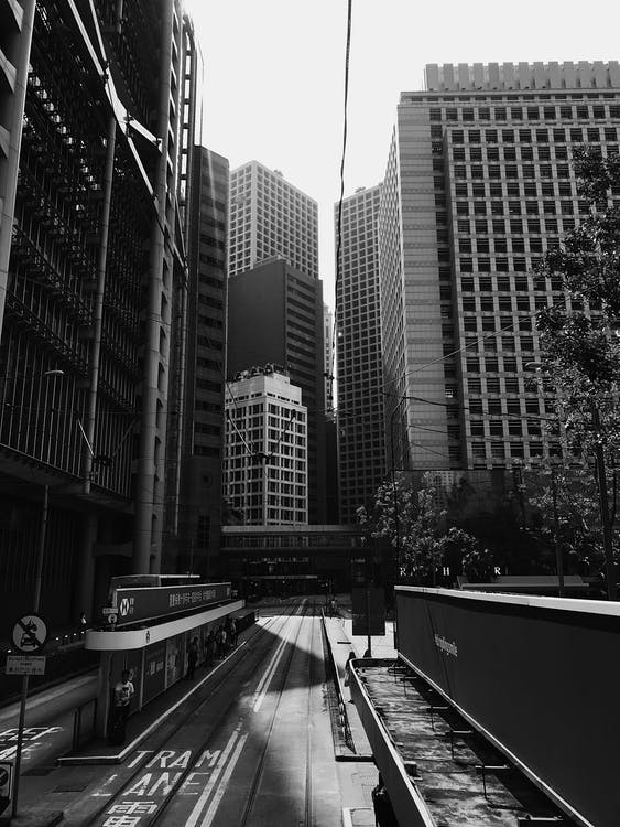 Monochrome Photo of Waiting Shed Near Buildings