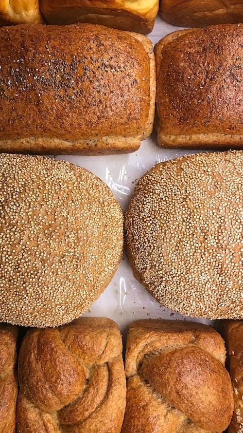 Free stock photo of bakery, bread, hamburger, sesame