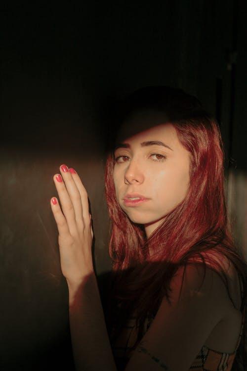 Základová fotografie zdarma na téma pexelsbrasil