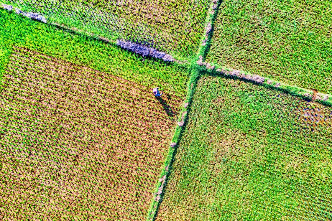 abstract, aerial, agriculture