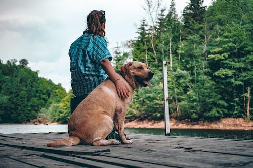Woman Holding Yellow Labrador Retriever