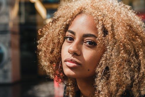 Photos gratuites de afro, attirant, beau, beauté