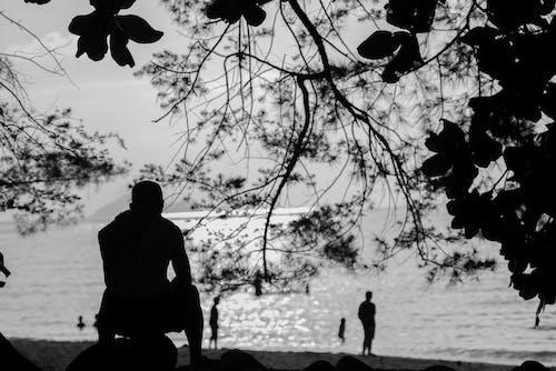Foto d'estoc gratuïta de blanc i negre