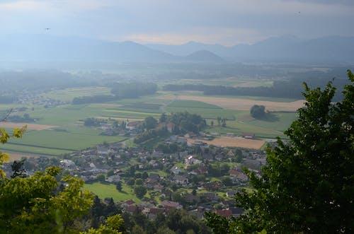 Fotobanka sbezplatnými fotkami na tému kopce, slovinsko, večer, vták