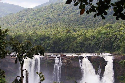 Imagine de stoc gratuită din apă, apă curgătoare, arbori, călătorie