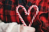holiday, heart, hand