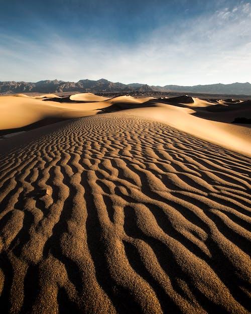 Безкоштовне стокове фото на тему «гарячий, Денне світло, дюна, мальовничий»