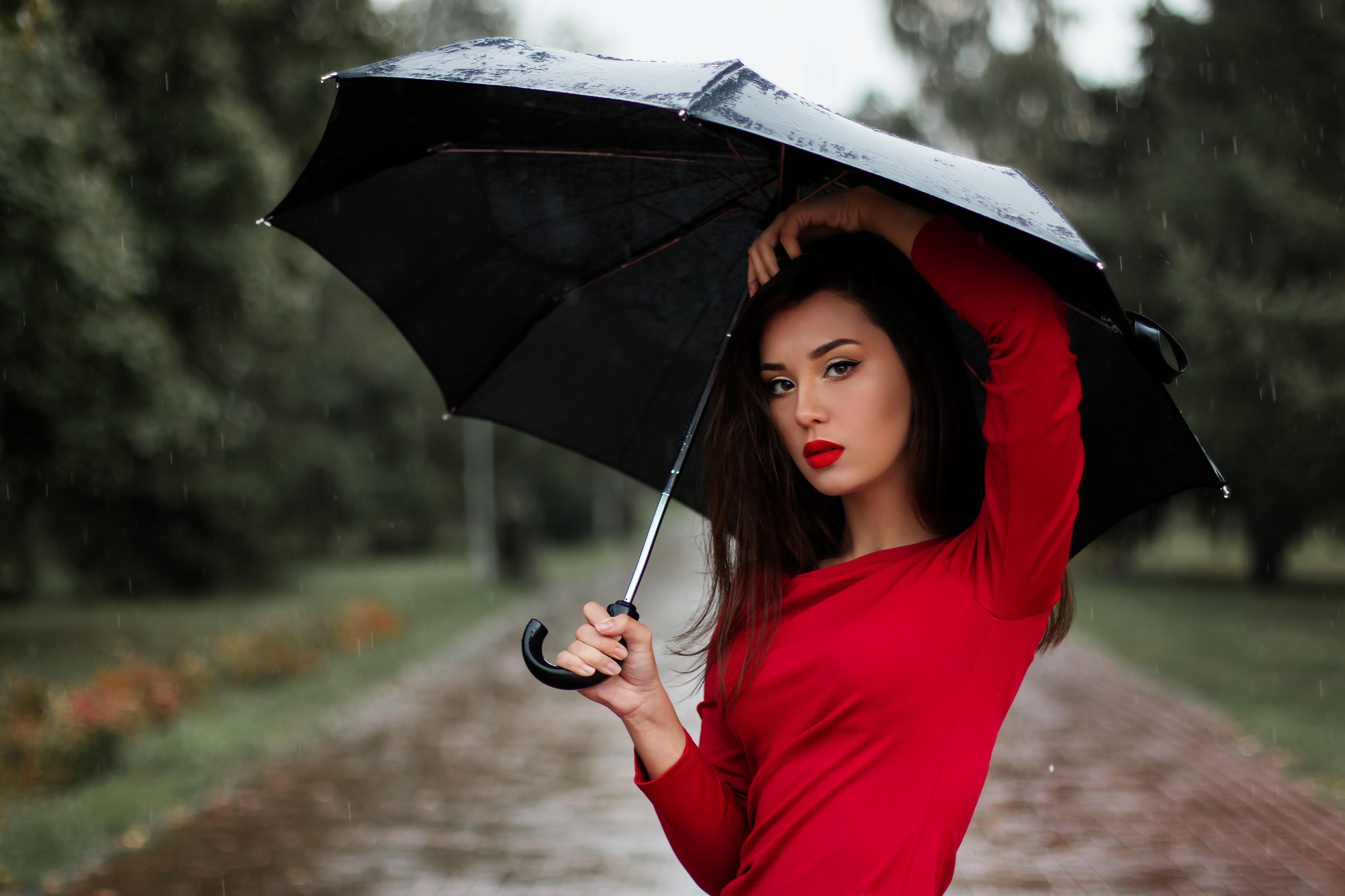 250 Amazing Umbrella Photos  Pexels  Free Stock Photos-8375