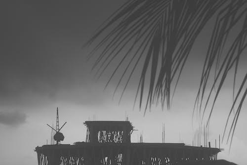 bw, 下雨天, 雨云 的 免费素材照片