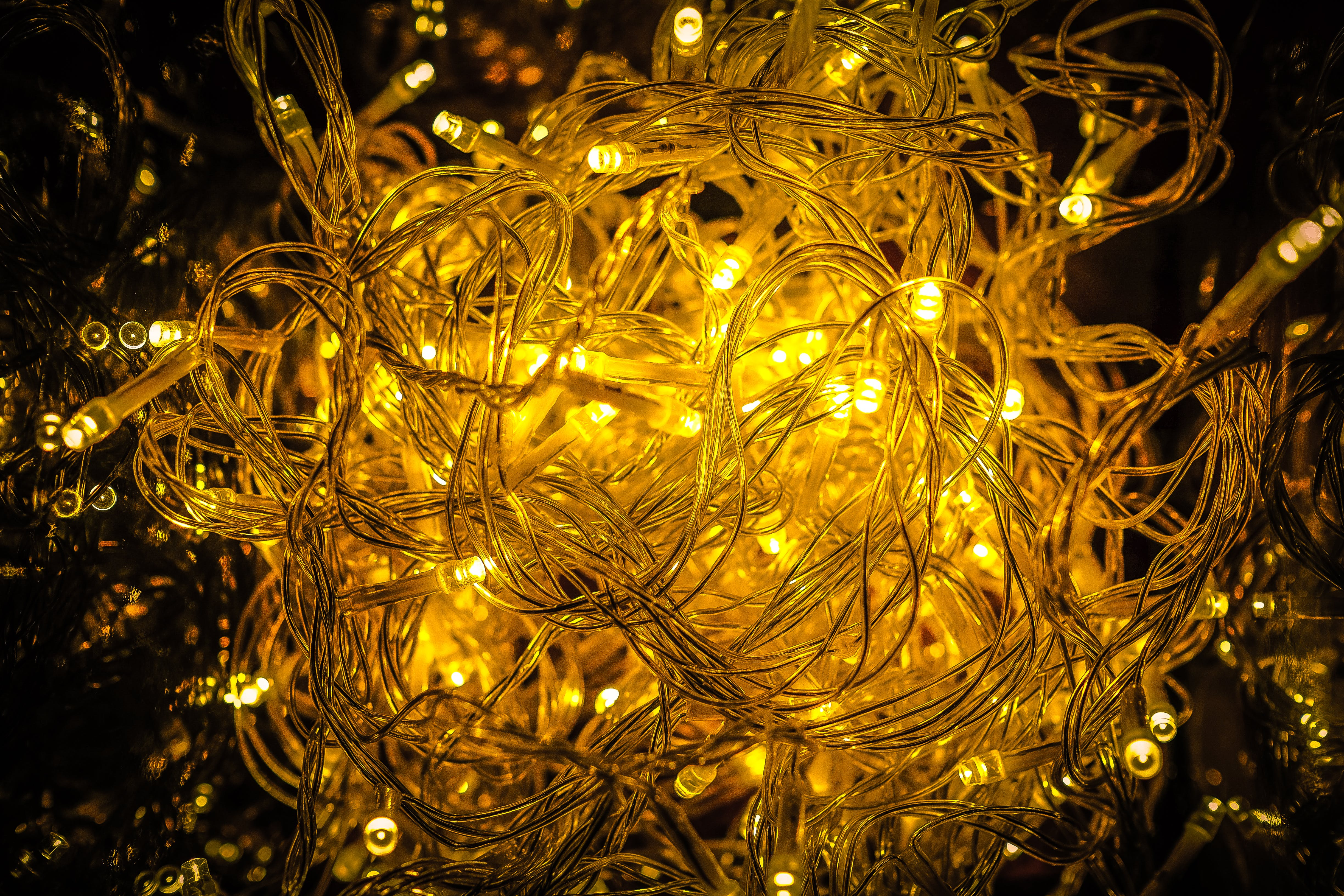 Close-up of Yellow Christmas Lights