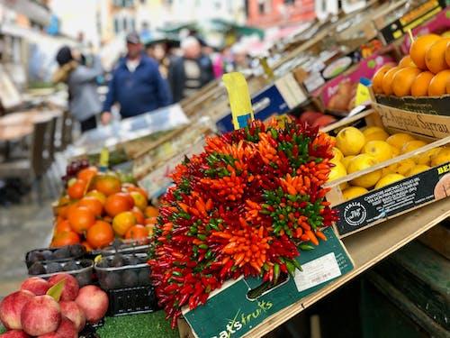 Fotos de stock gratuitas de abundancia, almacenar, chiles verdes, clementinas