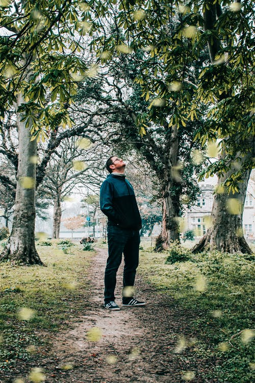 Photo of Man Standing Near Trees