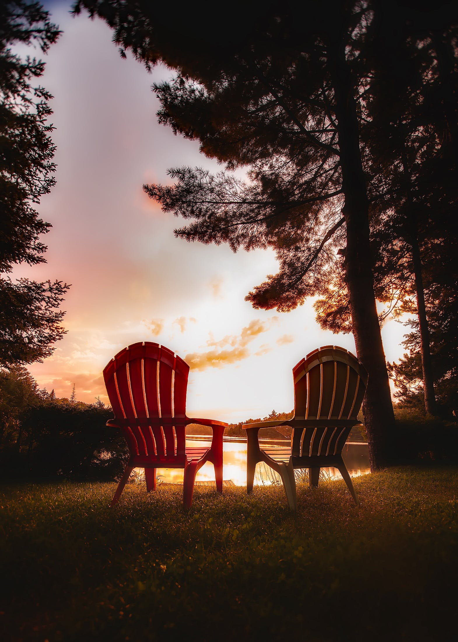 Chairs on Table Against Trees during Sunset