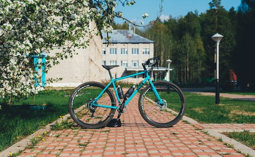 Ingyenes stockfotó bicikli, biciklizés, fák, fékek témában