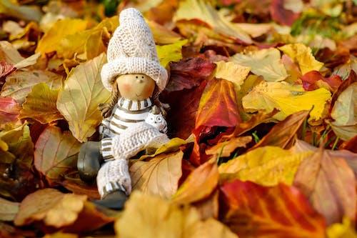 休息, 坐, 娃娃, 季節 的 免費圖庫相片