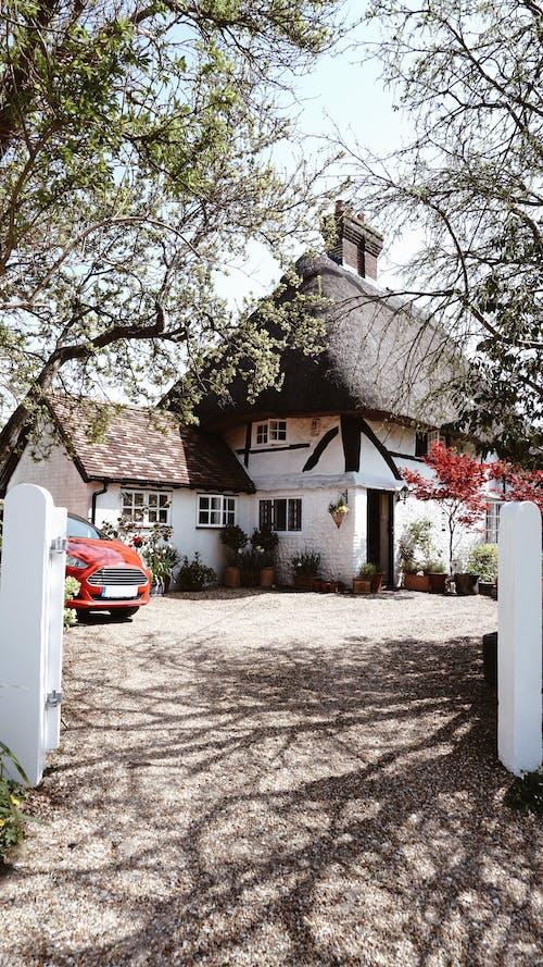 마을, 별장, 영국, 초가 지붕의 무료 스톡 사진