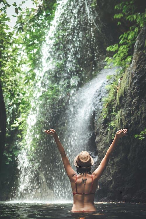 bikini, dešťový prales, dobrodružství