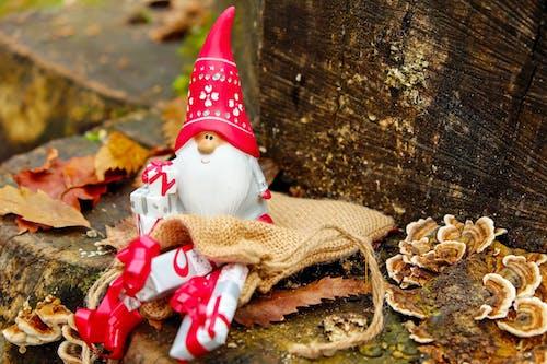Δωρεάν στοκ φωτογραφιών με advent, Άγιος Βασίλης, Αι Βασίλης, γιορτή