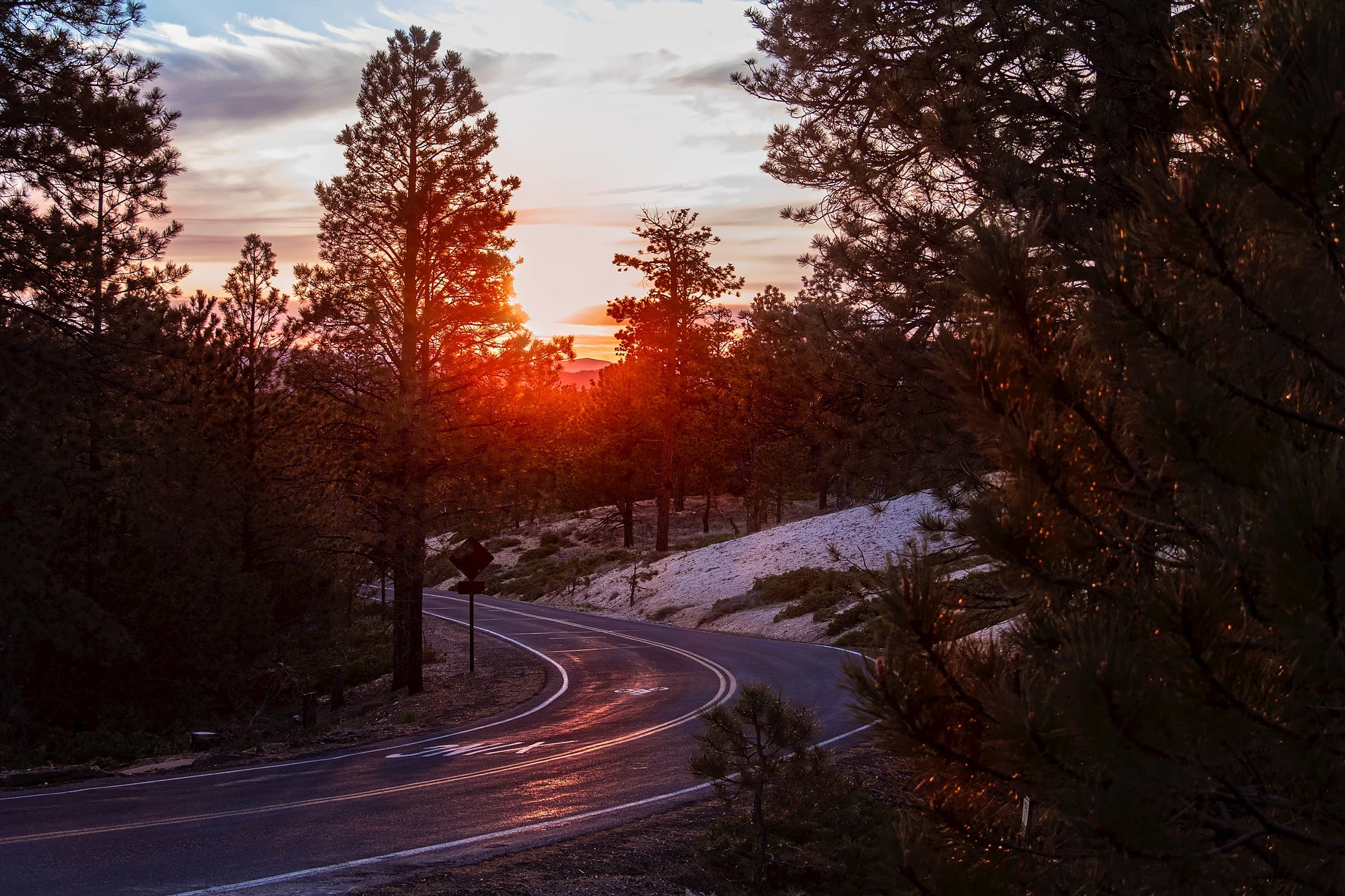 Road Amidst Trees Against Sky during Sunset