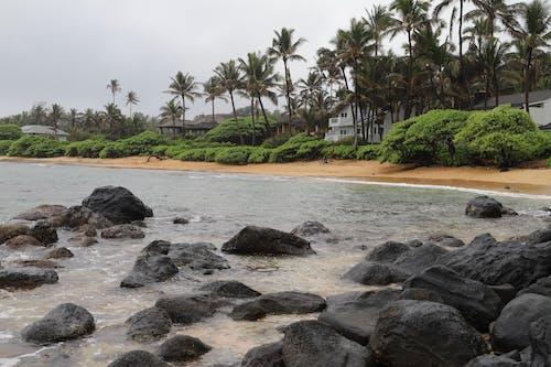 Ảnh lưu trữ miễn phí về Hawaii, kali, đại dương, đảo hawaii