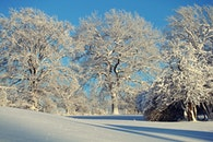 kalt, schnee, landschaft