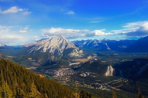 Gratis stockfoto met Alberta, bergen, bergketen, bomen