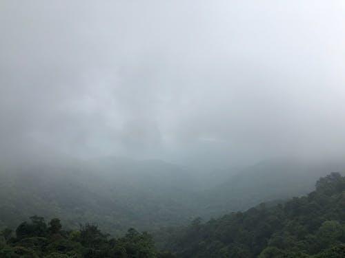 Ingyenes stockfotó hegy, ködös reggel, ködös táj, Vietnam témában