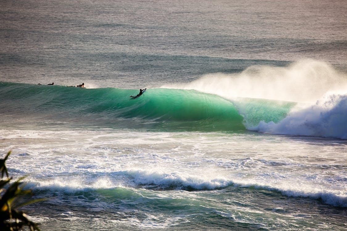 Photo of People Surfboarding