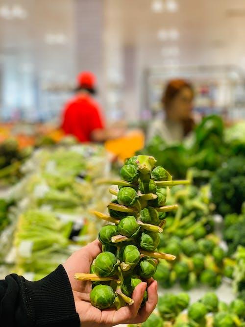 Ảnh lưu trữ miễn phí về màu xanh lá, rau quả tươi
