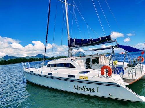 Foto d'estoc gratuïta de aigua blava, creuer en catamarà, creuer oceànic, oceà blau