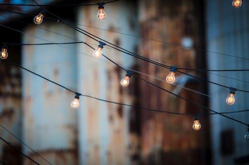 Fotobanka sbezplatnými fotkami na tému dekoratívny, diwali, drôty, káble