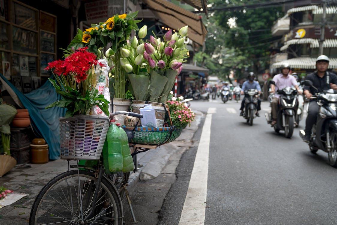 blommor, cykel, delikat