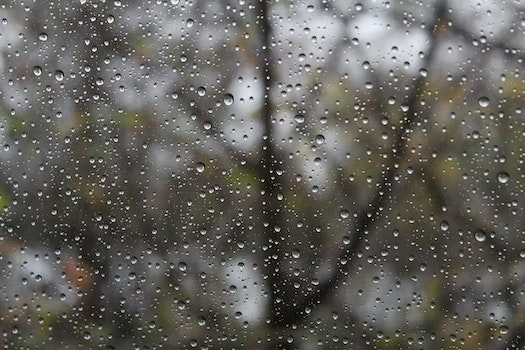 Close-up of Raindrops on Windshield