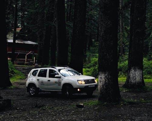 Бесплатное стоковое фото с renault, автомобиль, внедорожный, грязь