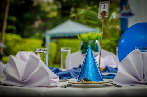 Δωρεάν στοκ φωτογραφιών με διακόσμηση γενεθλίων, διακοσμητικό πίνακα, κήπος, μπλε