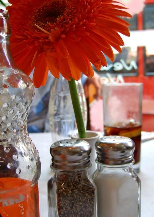 레스토랑, 소금, 양귀비, 후추의 무료 스톡 사진