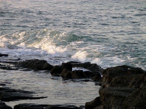 바다, 바위의 무료 스톡 사진