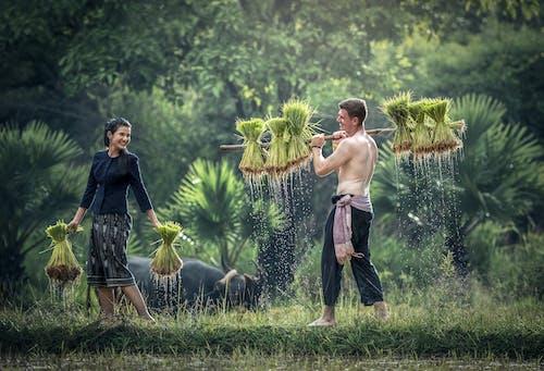 Darmowe zdjęcie z galerii z azjatycki, czas wolny, dorosły, drzewa